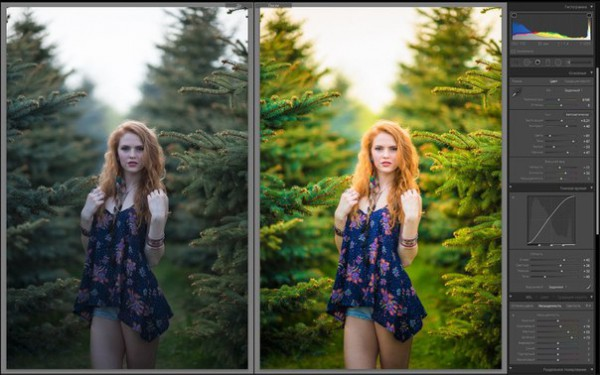 как сделать фото поярче в лайтрум особенность его применении